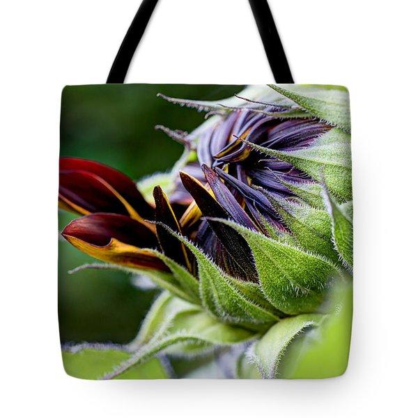 Demure Tote Bag by Heidi Smith