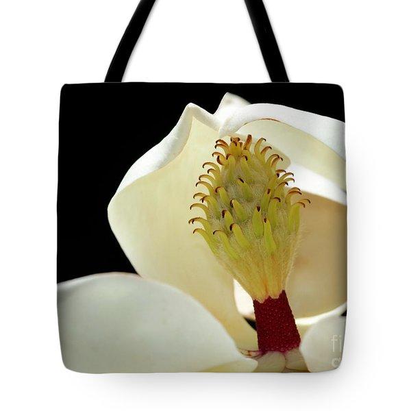 Demure Magnolia Tote Bag by Sabrina L Ryan