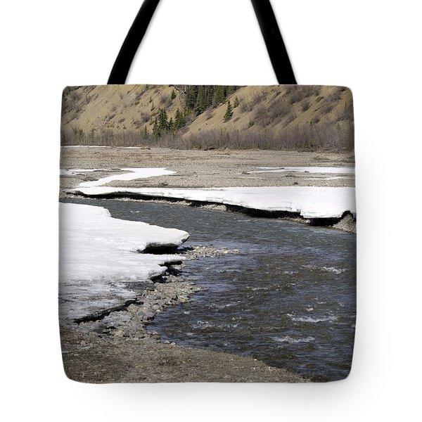 Denali Area River  Tote Bag by Tara Lynn