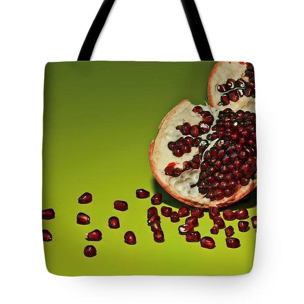 Departed Tote Bag by Evelina Kremsdorf