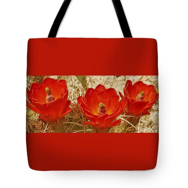 Desert Blooms Tote Bag by Ben and Raisa Gertsberg