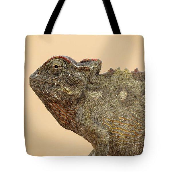 Desert Chameleon Tote Bag by Ramona Johnston