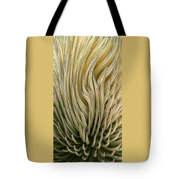 Desert Green Tote Bag by Ben and Raisa Gertsberg