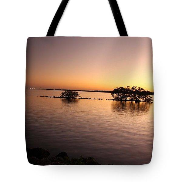 Deserted Island Tote Bag by AR Annahita