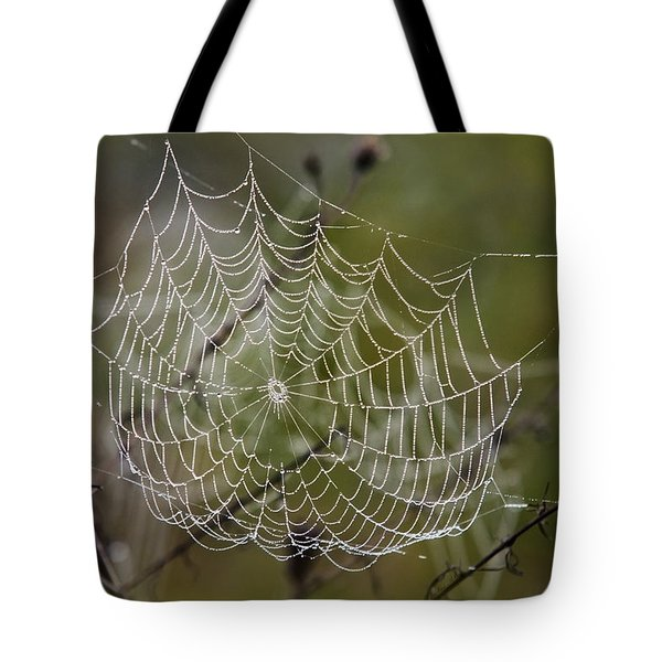 Dew Drops Spider Web Tote Bag by Christina Rollo