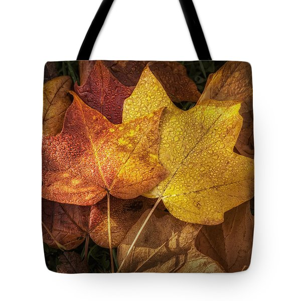 Dew on Autumn Leaves Tote Bag by Scott Norris