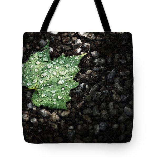 Dew On Leaf Tote Bag by Scott Norris