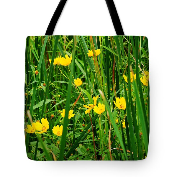 Diamonds In The Rough Tote Bag by Frozen in Time Fine Art Photography