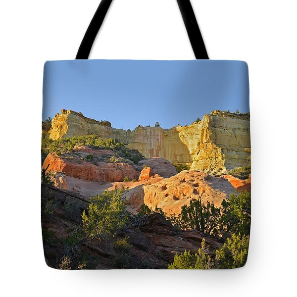Dine' Tah ' Among The People ' Scenic Road Tote Bag by Christine Till