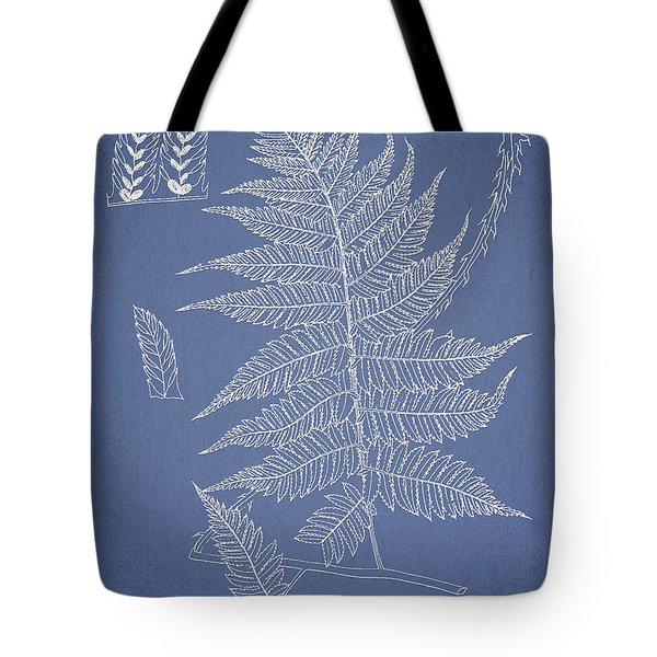 Diplazium jerdoni Tote Bag by Aged Pixel