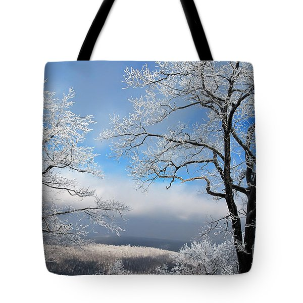 Distant Storms Tote Bag by Lois Bryan
