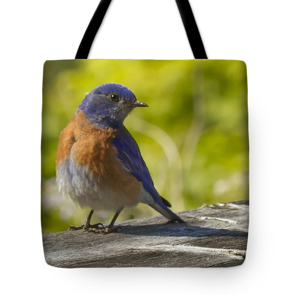Distracted Tote Bag by Jean Noren