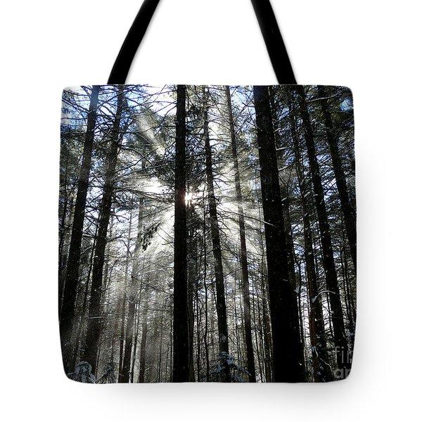 Divine Light Tote Bag by Avis  Noelle