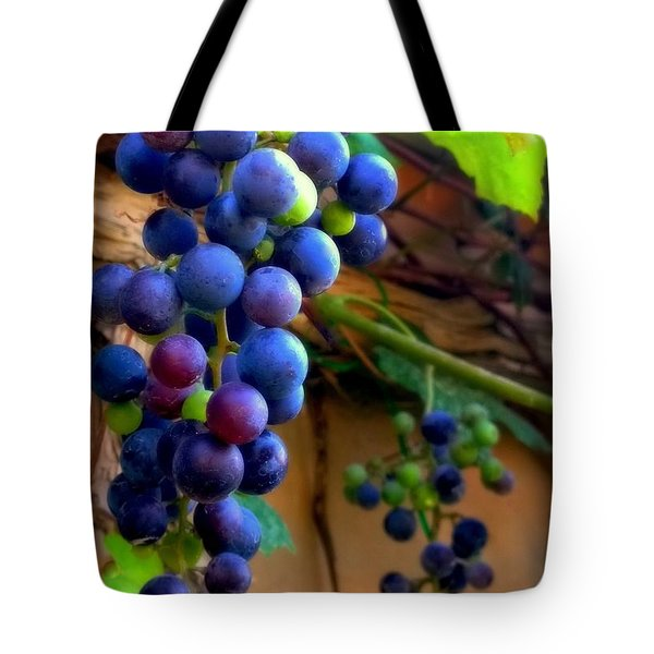 DIVINE PERFECTION Tote Bag by KAREN WILES