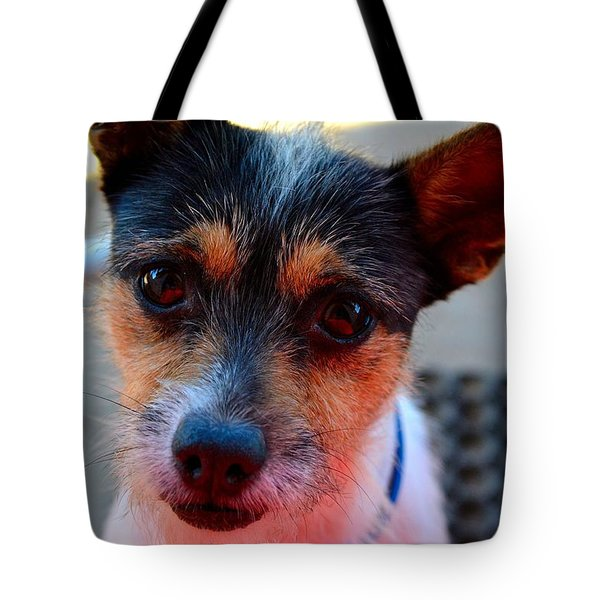 Dog 2   Tote Bag by Naomi Burgess