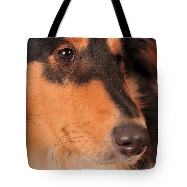 Dog Portrait Tote Bag by Randi Grace Nilsberg