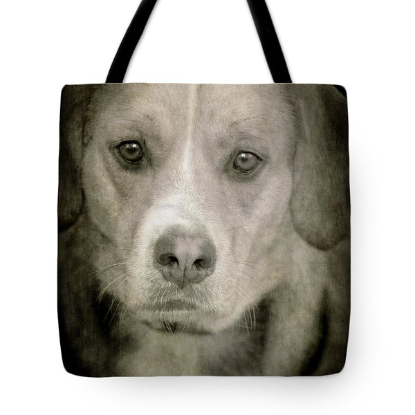 Dog Posing Tote Bag by Loriental Photography