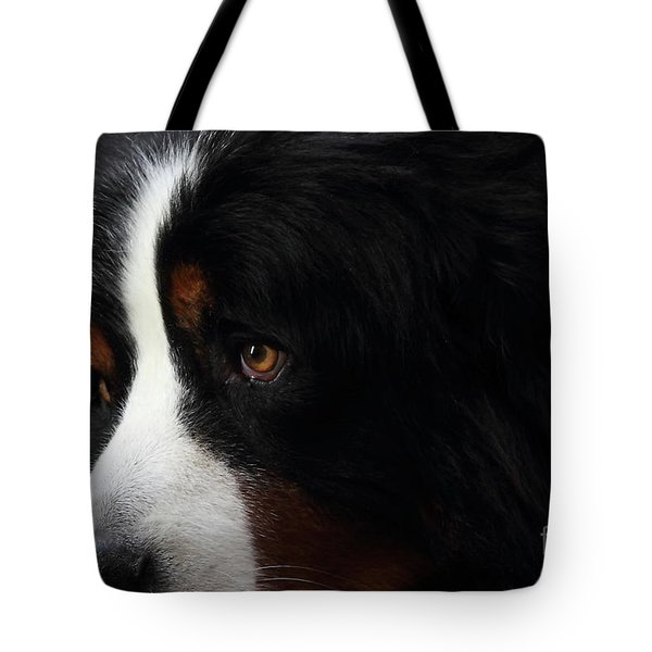 Dog Tote Bag by Wingsdomain Art and Photography