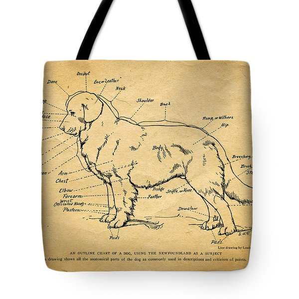 Doggy Diagram Tote Bag by Tom Mc Nemar