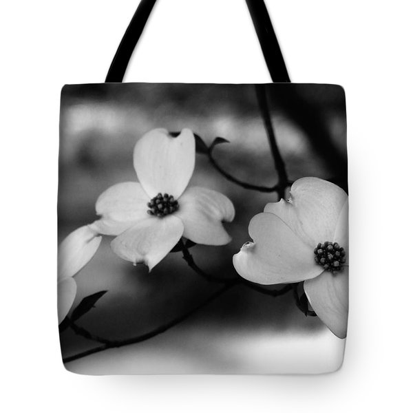 Dogwood Black And White Tote Bag by Andrea Anderegg