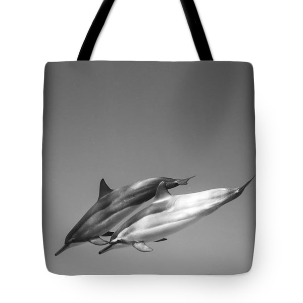 Dolphin Pair Tote Bag by Sean Davey