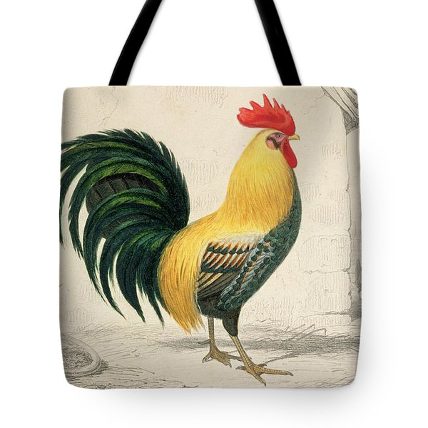 Domestic Cock Tote Bag by Edouard Travies