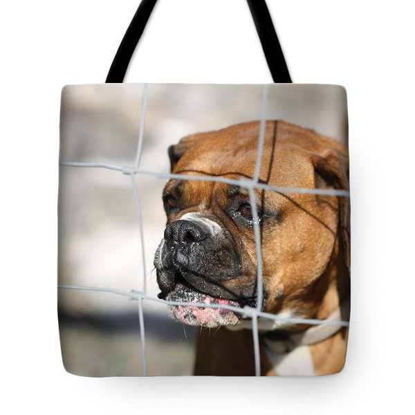 Don't Fence Me In Tote Bag by Terry Fleckney