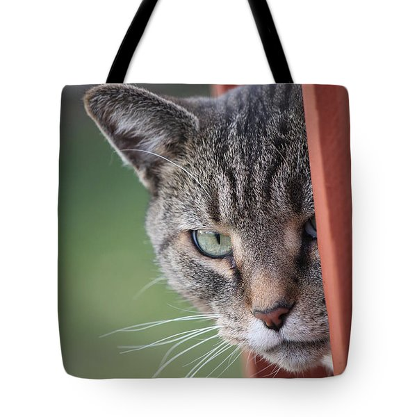 Don't Mess With Gilbert Tote Bag by Jennifer Doll
