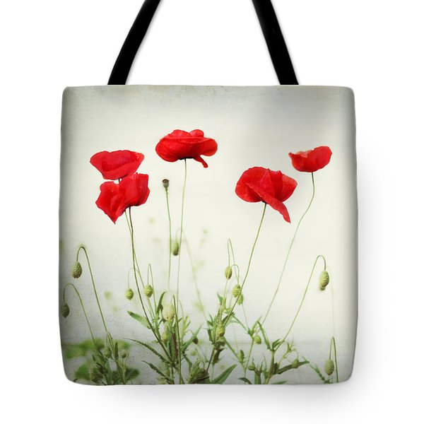 Dorothy Tote Bag by Amy Tyler