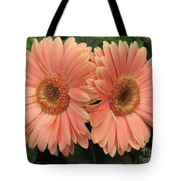 Double Delight - Coral Daisies Tote Bag by Dora Sofia Caputo Photographic Art and Design