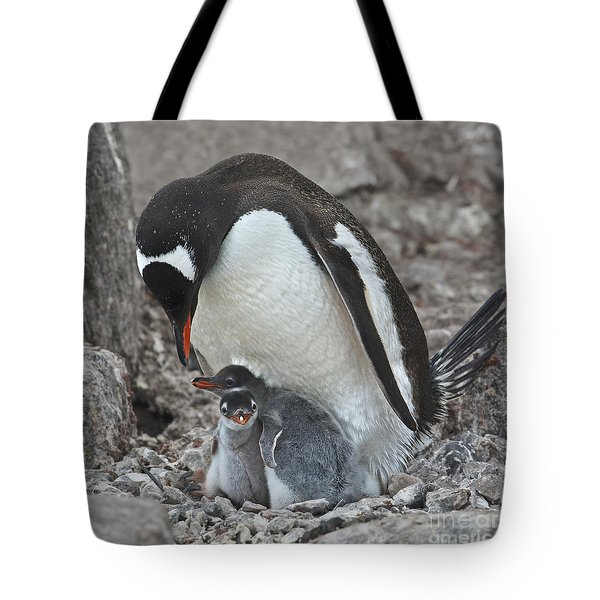 Double Love... Tote Bag by Nina Stavlund
