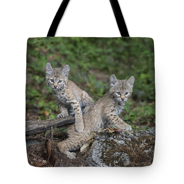 Double Trouble Tote Bag by Sandra Bronstein