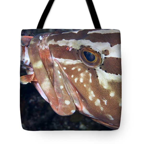 Down the Hatch Tote Bag by Jean Noren