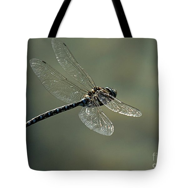 Dragonfly In Flight Tote Bag by Bob Christopher