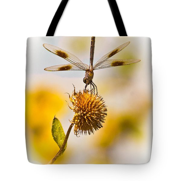 Dragonfly On Dead Bud Tote Bag by Robert Frederick