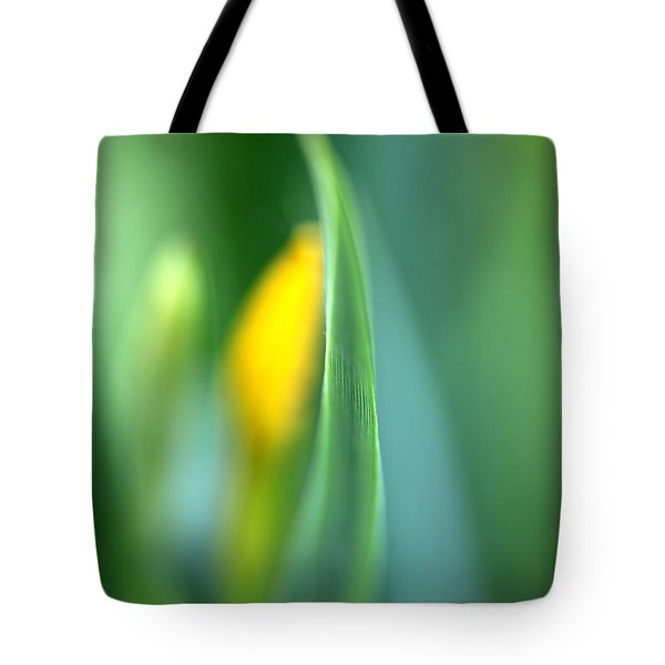 Dream Tote Bag by Annie  Snel