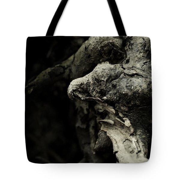 Dream Chanter Tote Bag by Rebecca Sherman