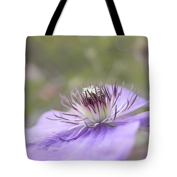 Dreaming Tote Bag by Kim Hojnacki