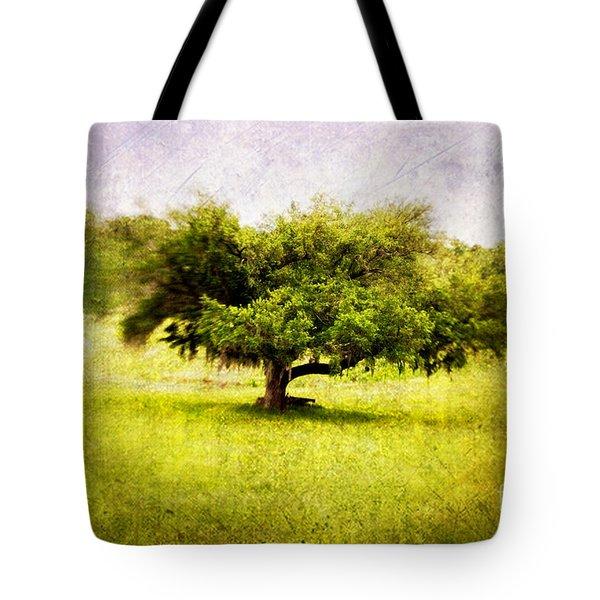 Dreamland Tote Bag by Scott Pellegrin