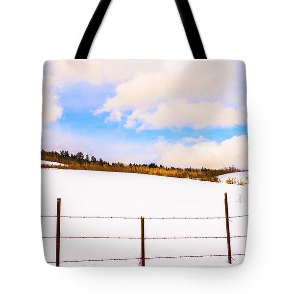 Dreamtime Tote Bag by Sandi Mikuse