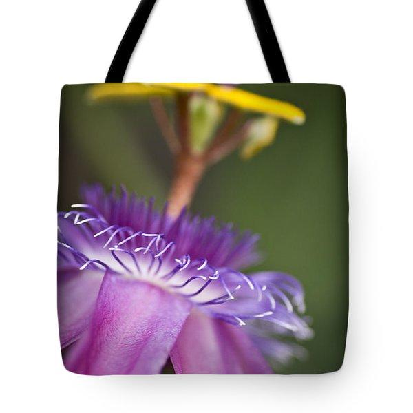 Dreamy Passion Tote Bag by Priya Ghose