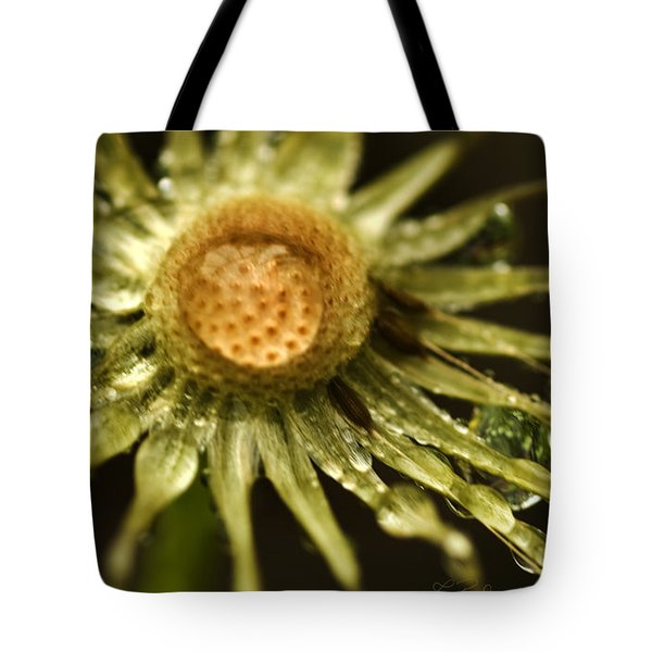 Dried Dandelion after Rain Tote Bag by Iris Richardson