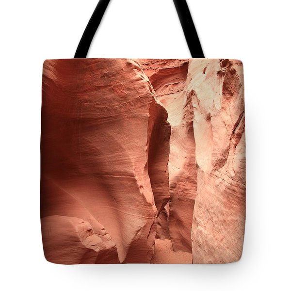 Dry Fork Sandstone Tote Bag by Adam Jewell