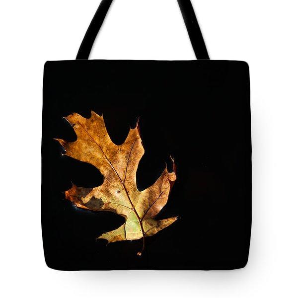 Dry On Water Tote Bag by Karol Livote
