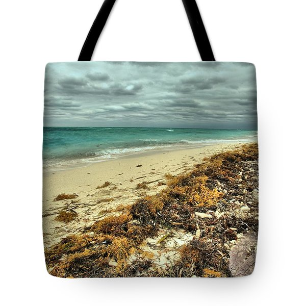 Dry Tortugas Beach Tote Bag by Adam Jewell