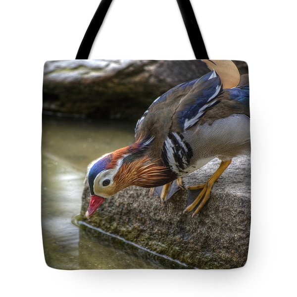 Duck On The Edge Tote Bag by Agrofilms Photography
