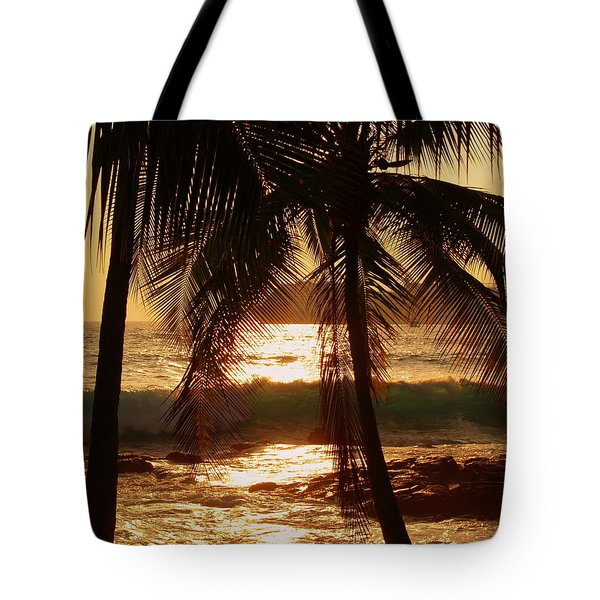 dusk Tote Bag by Athala Carole Bruckner