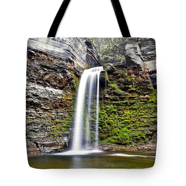 Eagle Cliff Falls Tote Bag by Frozen in Time Fine Art Photography
