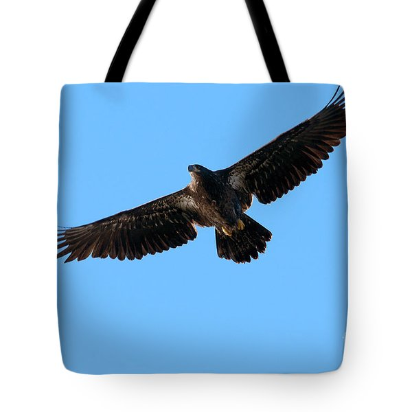 Eagle Wings Tote Bag by Sharon  Talson