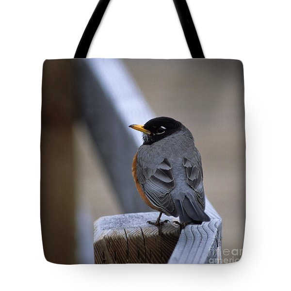 Early Bird Tote Bag by Sharon Elliott
